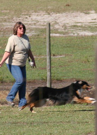 Corrine Brown and Ty at ASCA trial Groveland Florida